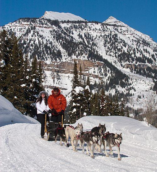 sled-dog-tours-granite-hot-springs